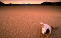 2014 Likely to be Hottest Year Ever Measured