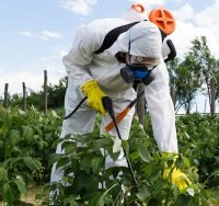 Revised Certification Standards for Pesticide Applicators