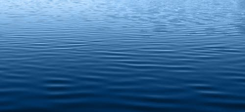 Muskegon Lake Cleanup Efforts Underway